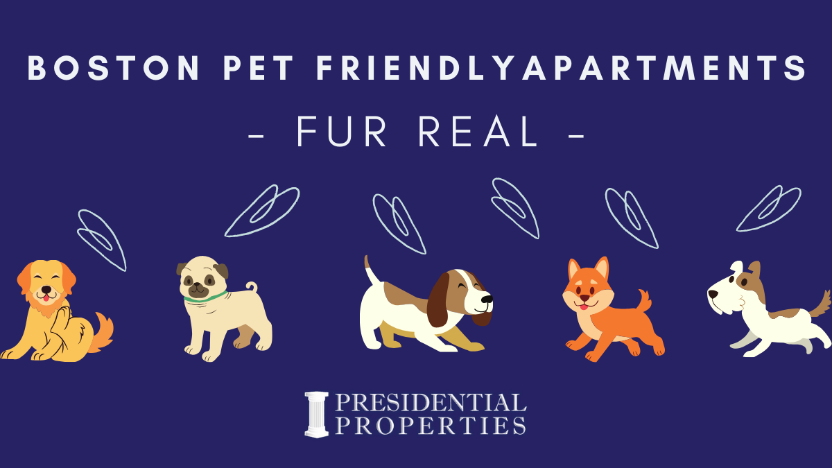 Quarantine Puppies? Look No Further! Pet Friendly Boston Apartments!